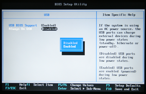 Thinkpad BIOS Always On USB